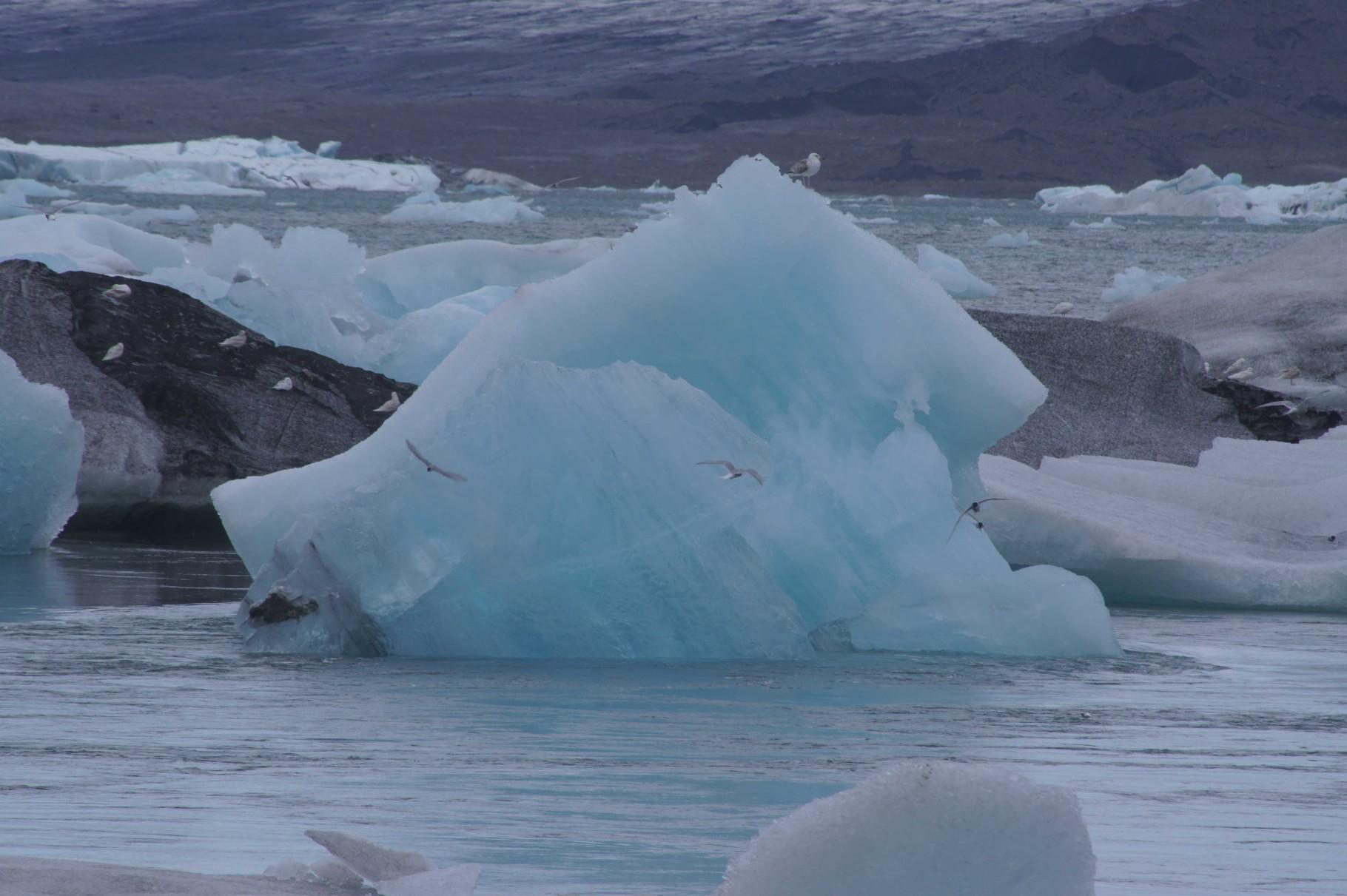 Der Gletscher schmilzt  - Jökulsárlón