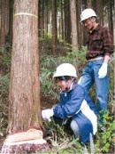 ▲森林体験学習 (写真提供/コープ自然派こうち)