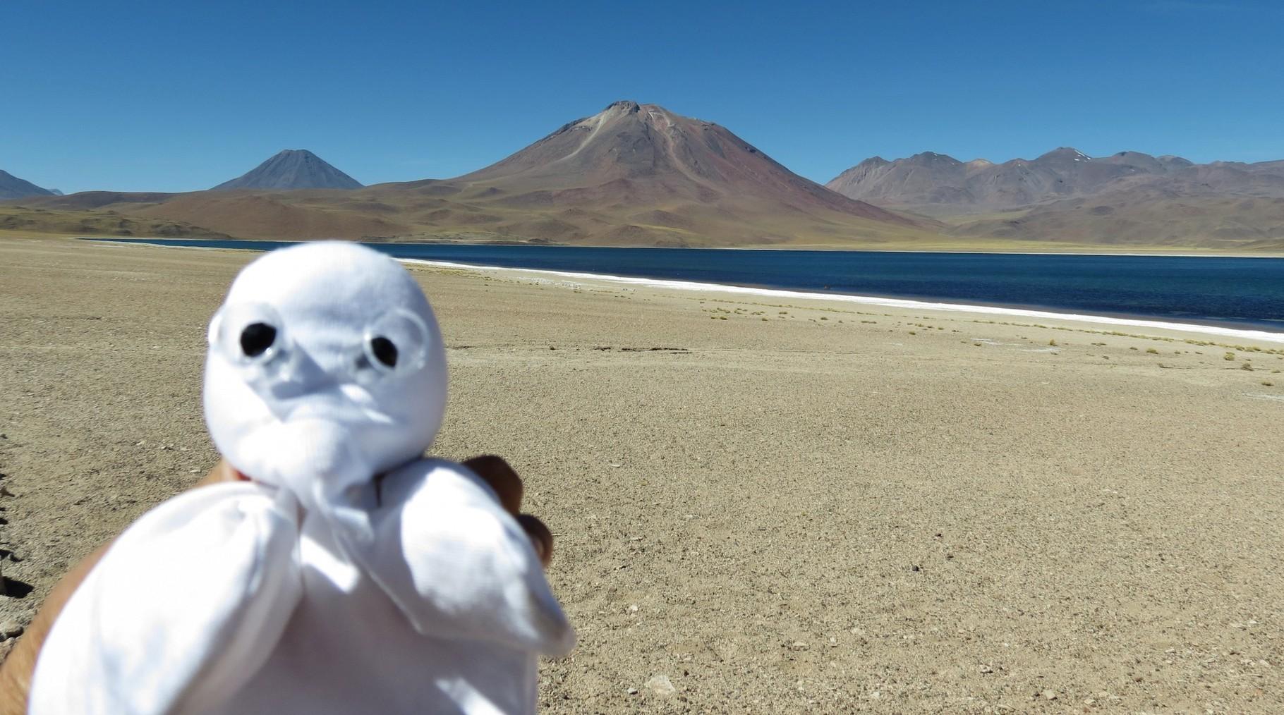 Me in der AtacamaWüste