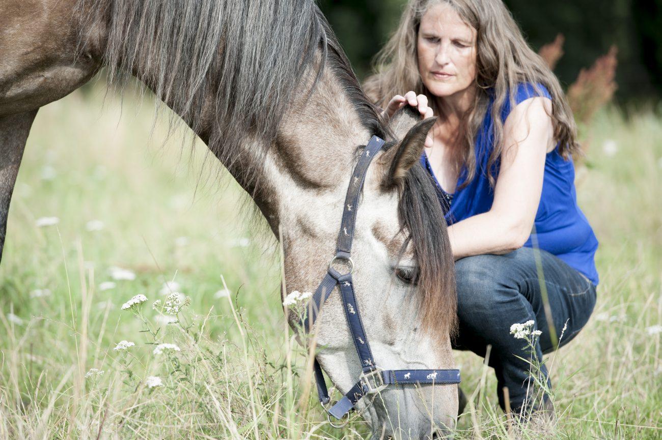 Coachimo Sabine Schröder Wie Pferde deine Berufung coachen