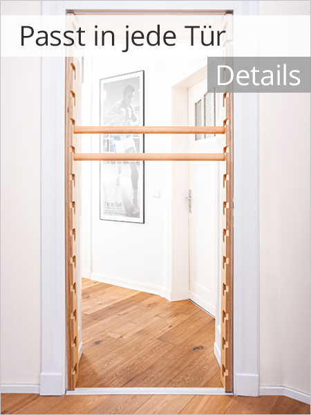 FatMonkey Sprossenwand für die Tür