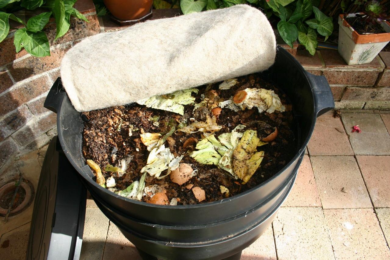 Con CAN-O-WORMS podrás obtener el mejor fertilizante natural para tus plantas, a partir de tus residuos de alimentos.