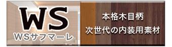 大日本印刷株式会社 WSサフマーレ