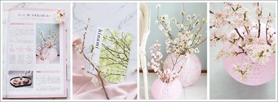 オルビスhinami3月号、もっと桜を身近に楽しむ~取材掲載して頂きました。