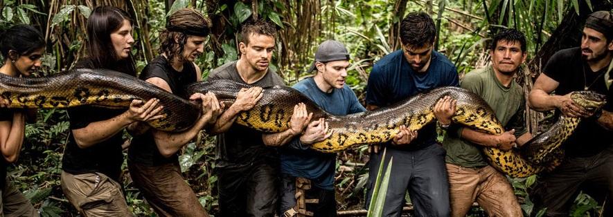 экспедиция в джунгли, анаконда