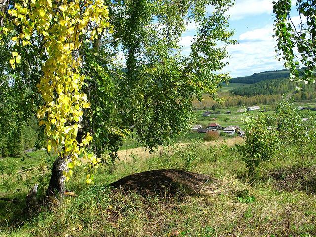Село Новотроицкое