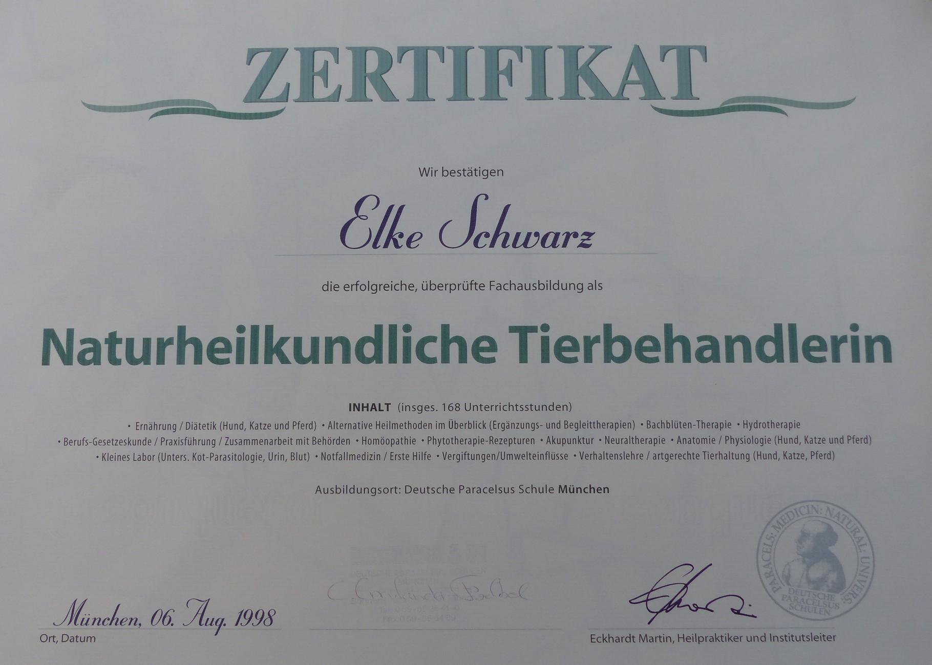 Ausgezeichnet Diplom In Anatomie Und Physiologie Fotos - Menschliche ...
