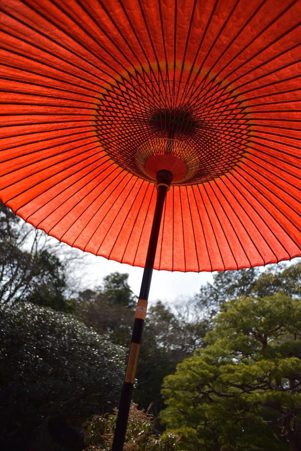 旧竹林院 緋蛇目傘