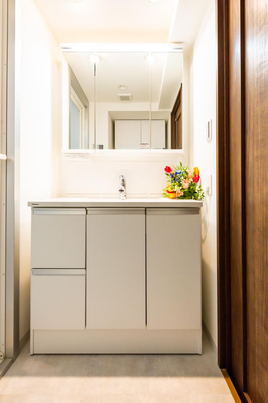 三面鏡とシャワー水栓付きの洗面台