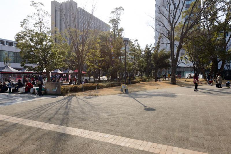 中野四季の森公園3(大学群)