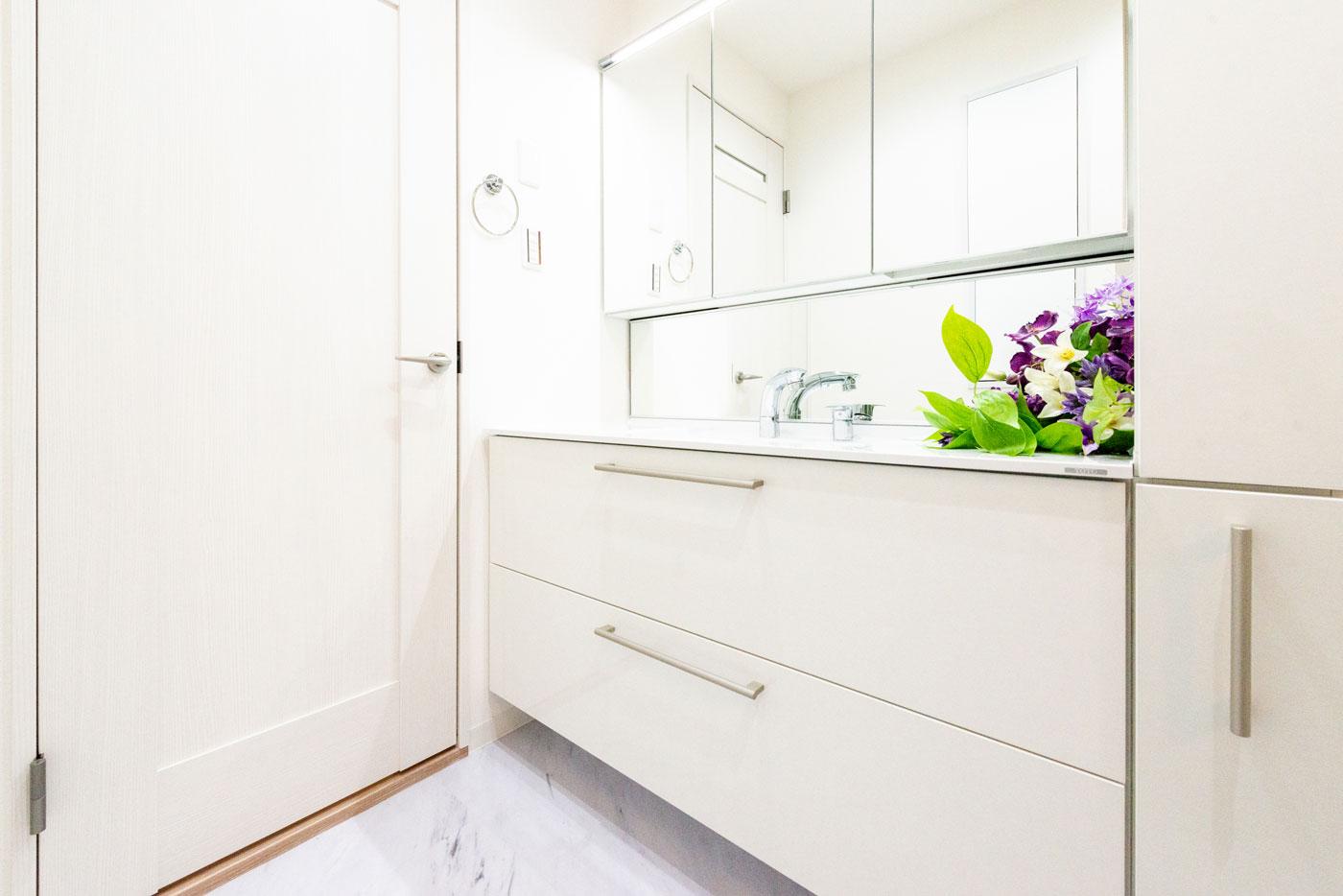 洗面室(壁にも棚があります)