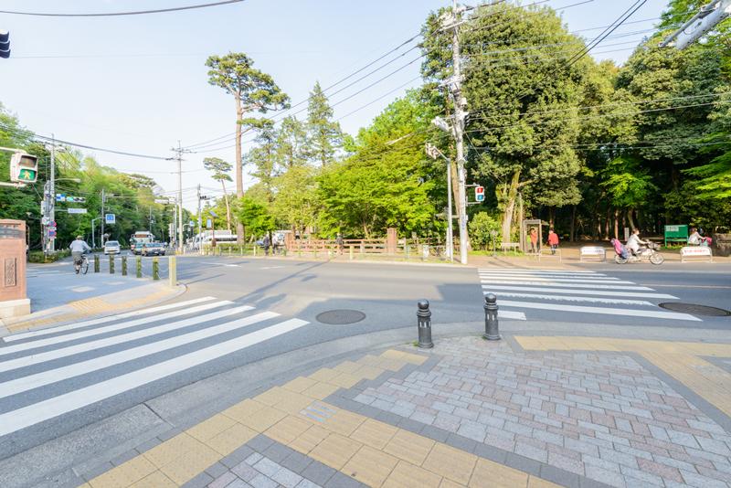 風の散歩道(万助橋)10