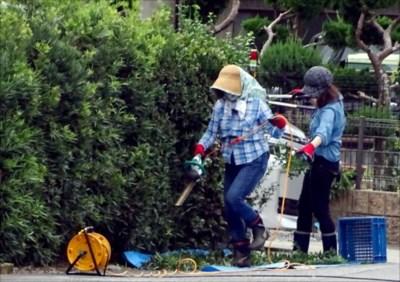 香川で草刈りや空き家管理を依頼するなら【NPO法人 香川県空家・空地管理センター】~ゴミ処分は実費となります~