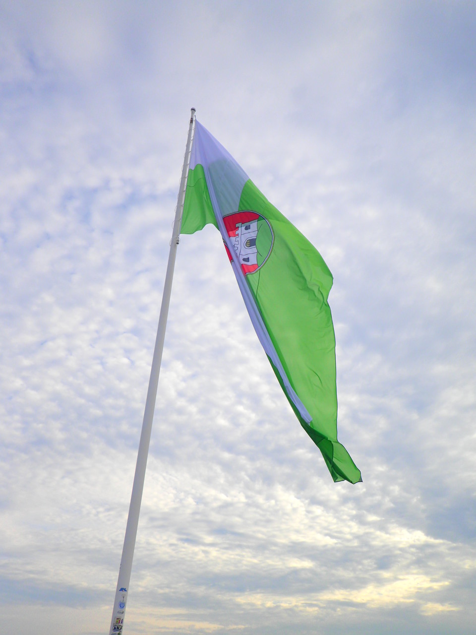 Ljubljana's city flag