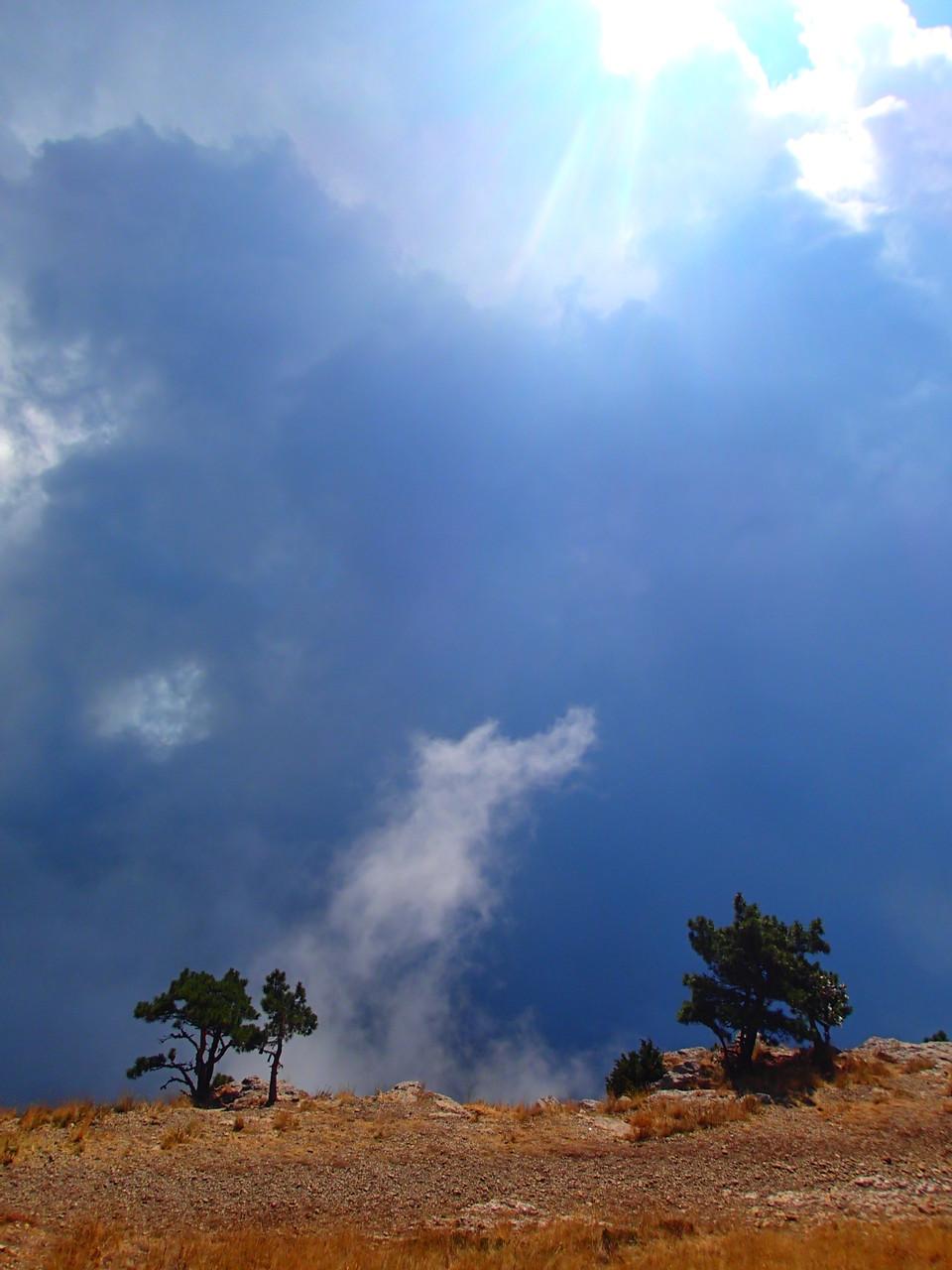 Wolken steigen hoch aus einer Schlucht
