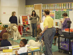 Therapy Dogs in Classrooms
