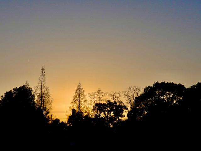 公園からー冬の夕景
