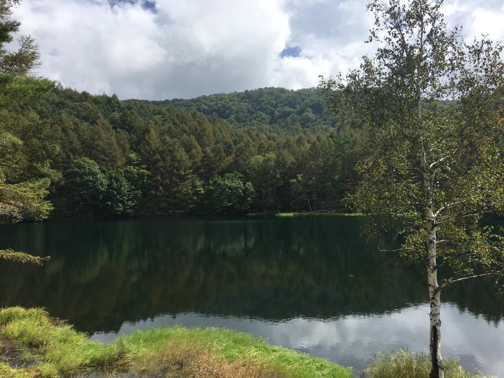 湖面に綺麗に景色が写ります。