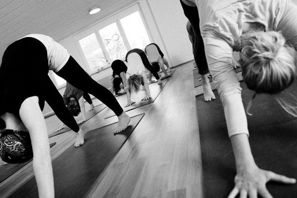 Yoga üben, Übende in Adho Mukha Svanasana, der nach unten schauende Hund