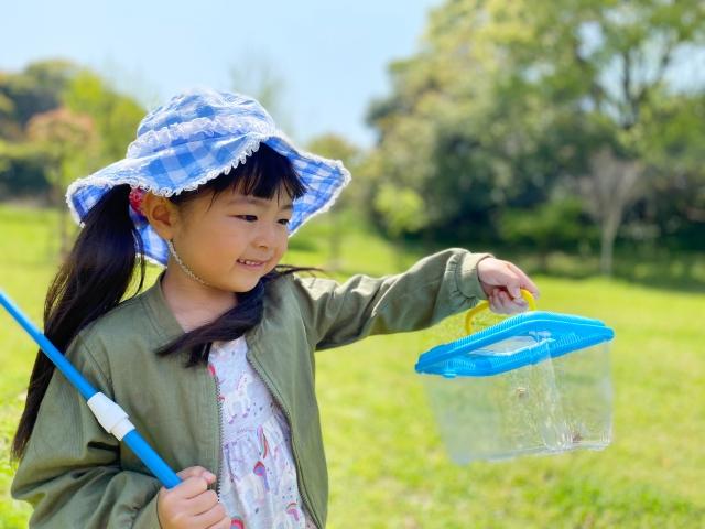 自粛期間でも気分転換♪子供と楽しむ春の虫取りのおススメ