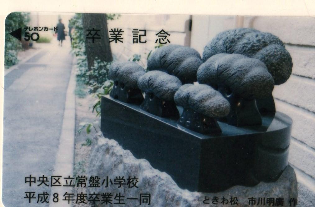 東京都中央区立常盤小学校 -ときわ松-