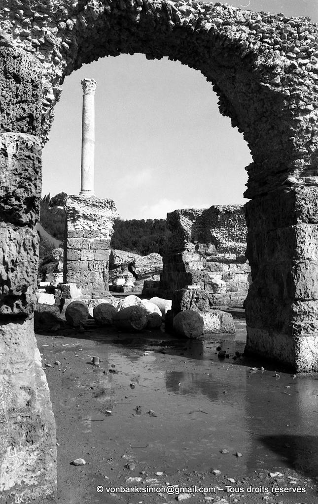 [NB016-1981-02] Carthage (Carthago) : Thermes d'Antonin - Colonne relevée du frigidarium vue depuis les sous-sols