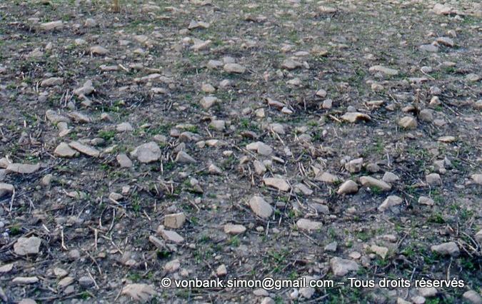 [003-1983-36] Ksar Mdoudja (Civitas A ........) : Pierres de taille éclatées (détail)