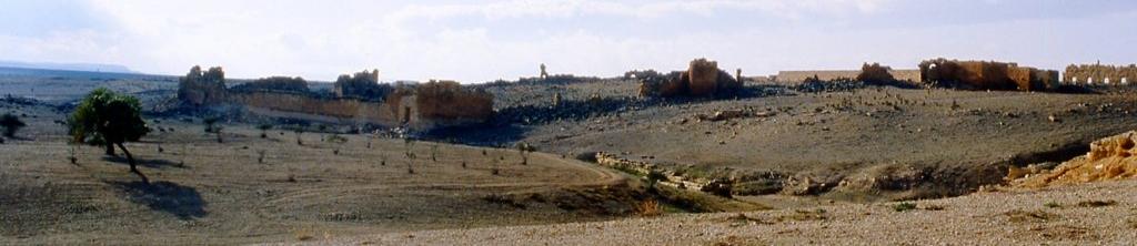 [007-1983-26a] Haïdra (Ammaedara) : Citadelle byzantine - En haut, à droite, l'édifice à fenêtres