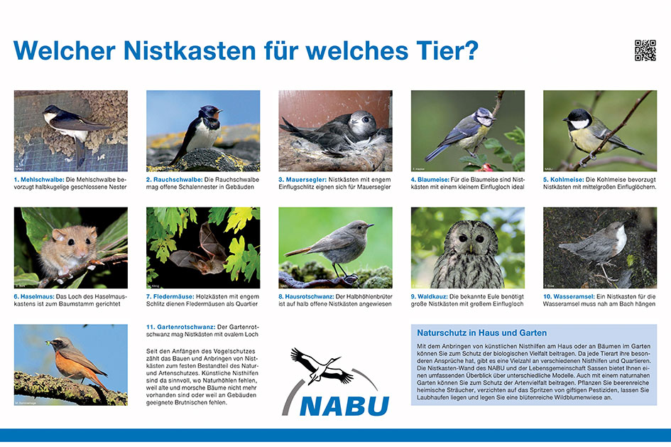 Die NABU Info Wand informiert über den praktischen Naturschutz im eigenen Garten.