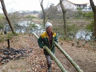 今日も頑張る大木さん!里山竹林から新池を望む