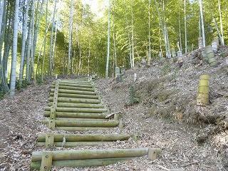 日差しが気持ち良い!竹炭の会の活躍で除伐が進みます