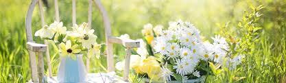 printemps se mettre à une activité physique se préparer à son mariage