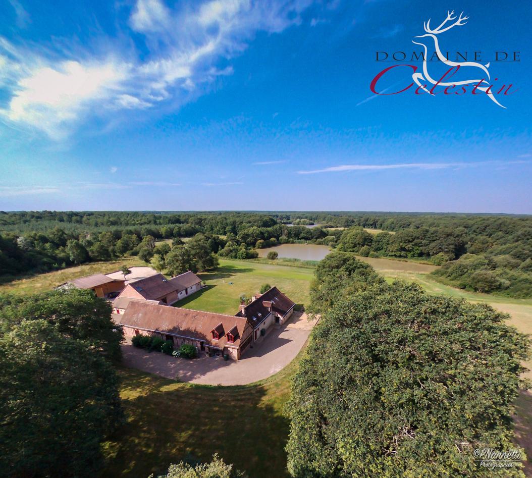 Domaine de Celestin (drone)