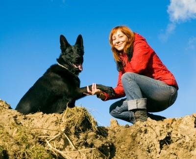 educazione cane cucciolo