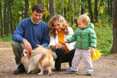 educazione cane da canile