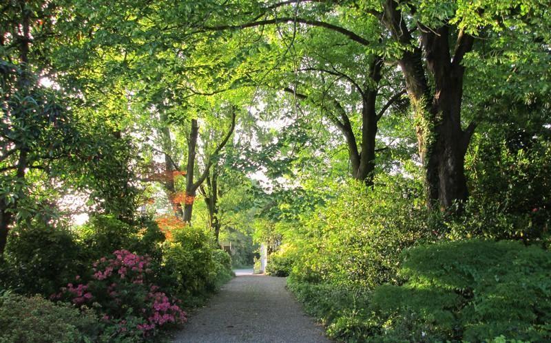 Le parc à la Closerie du Guilhat