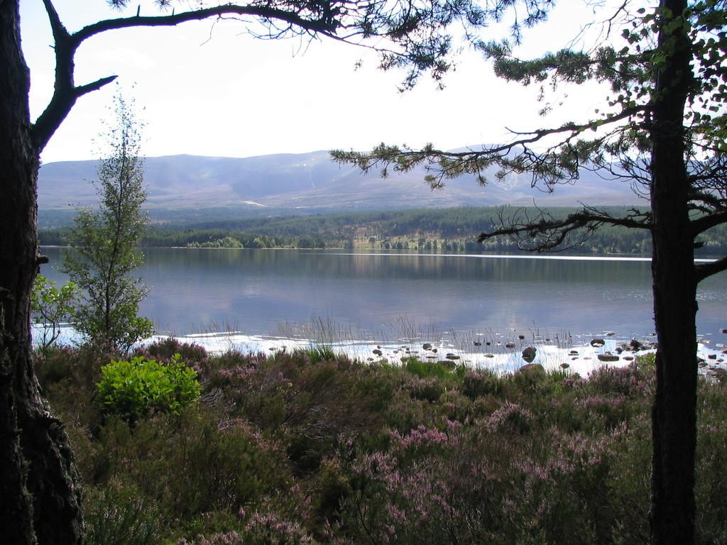 Loch Morar - Cairngorms
