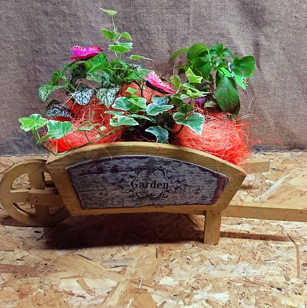 Carretilla mini de madera con plantas