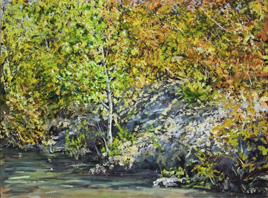 """Ufer (Dürrsee bei Münchendorf)"", Acryl, 80x60cm, 2008"
