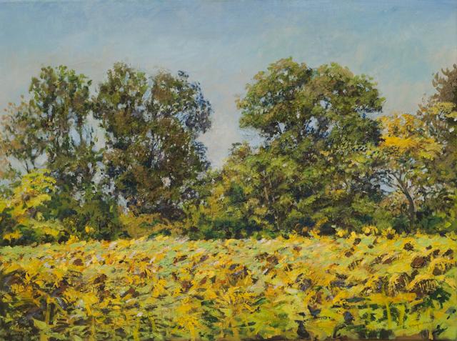 """Sonnenblumenfeld (Bei Münchendorf)"", Acryl, 80x60cm, 2008"