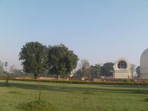 朝の大涅槃寺