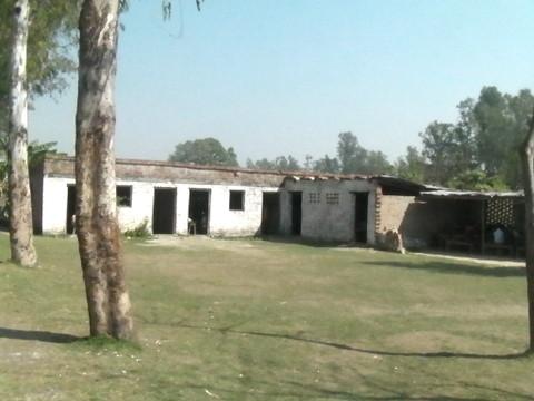 シュリドゥルガジ小学校