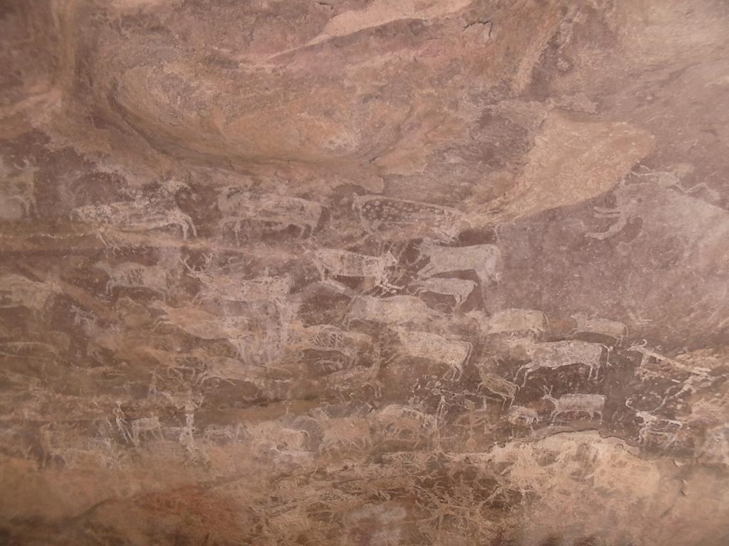 Zoo(動物園)と呼ばれる様々な動物が描かれた壁画