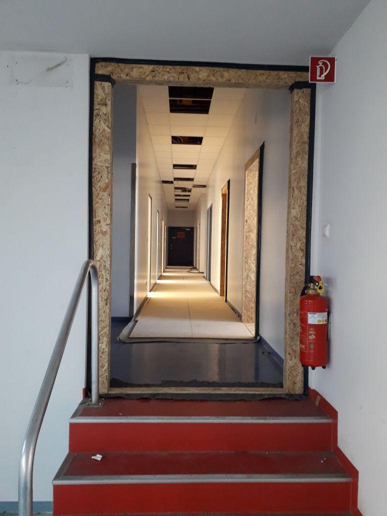 Sanierung Senckenberg Museum