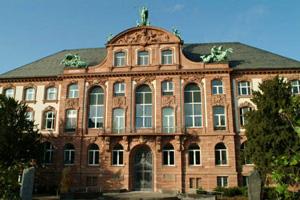 Sanierung Senckenberg Museum Frankfurt