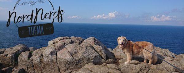 Schweden mit Hund auf unterwegs-zuhause.com