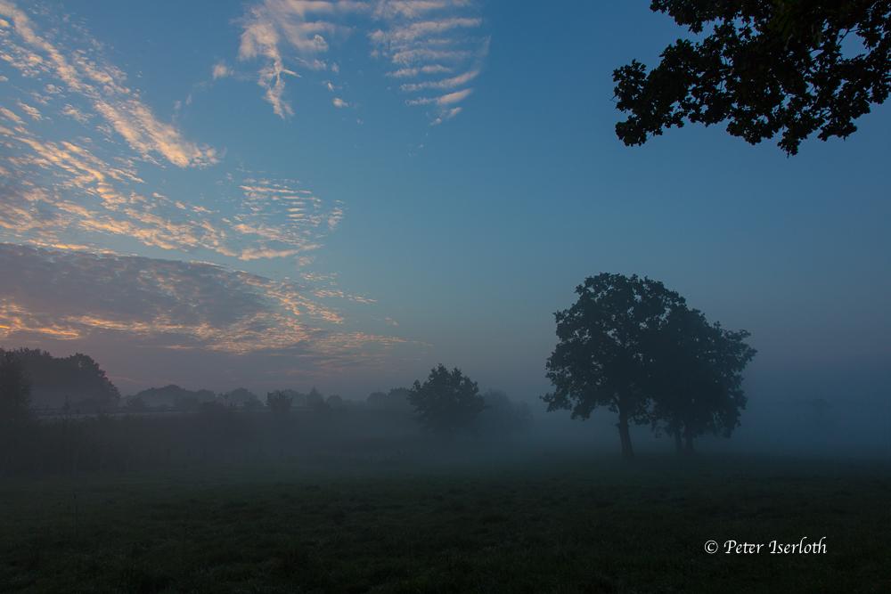 am Morgen, Reinbek, Deutschland