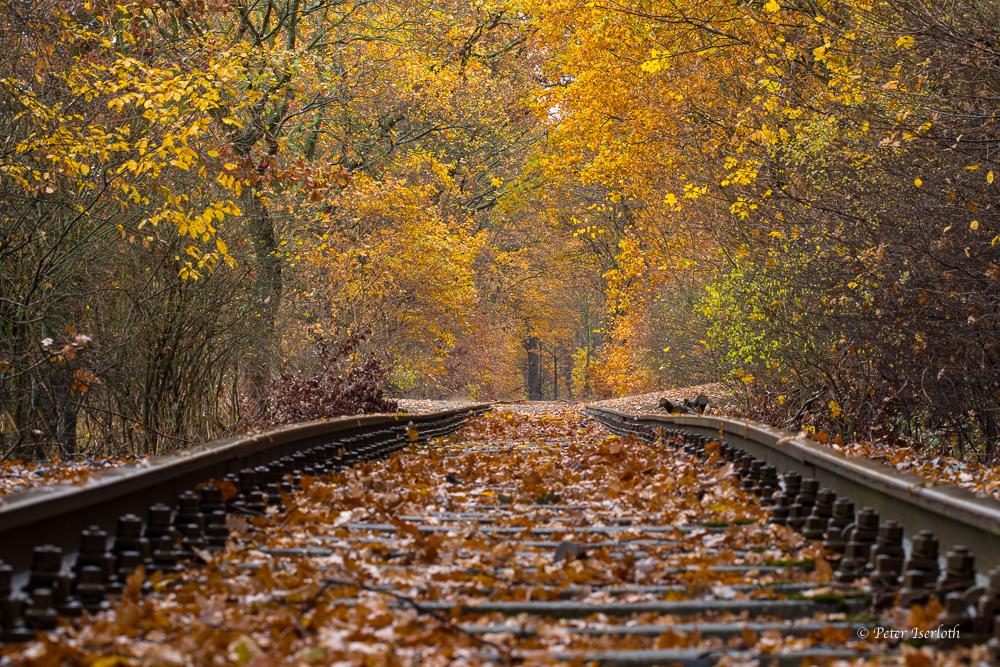 Ein altes Gleis in Glinde, Deutschland