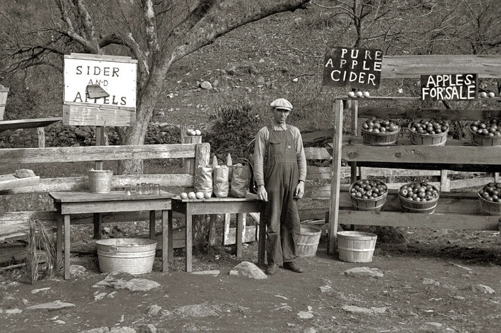Apple Seller, Nicholson Hollow (1935). Arthur Rothstein