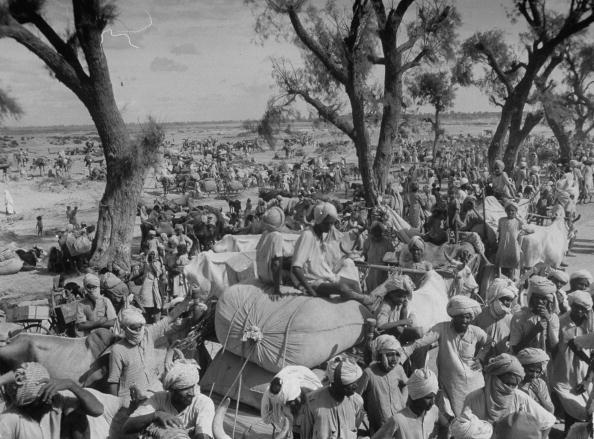 Convoy de sijes que migran a Punjab Oriental después de la división de la India (1947). Margaret Bourke-White/Getty Images